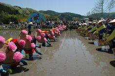 Okayama Niimi 岡山(おかやま) 新見(にいみ)  鯉が窪湿原まつり  こいがくぼしつげんまつり  鯉が窪湿原(新見市) 2013年5月3日(金)10:00~15:00  国指定天然記念物「鯉が窪湿原」に訪れた人達と共に自然の大切さを感じる催しです。