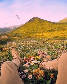#планета, #вокругсвета, #travel, #красота, #красиво, #travelblogger, #фото, #мир, #nature, #travelingram, #фотография, #инстаграмнедели, #naturephoto, #travelgram, #traveller, #travelphoto, #отдых, #супер, #отпуск, #traveler, #traveling, #путешествие, #путешественник, #поездка #greatnature, #путешествия, #туризм
