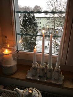 Shabby, Christmas Tree, Candles, Switzerland, Christmas, Teal Christmas Tree, Xmas Trees, Xmas Tree, Christmas Trees