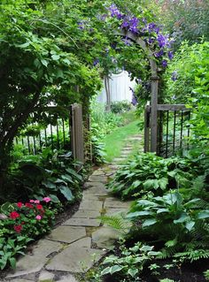 I could do something like this from the front gate to the backyard by the house. Make it more welcoming!