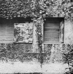 luigi moretti - casa il girasole Luigi, Building Materials, View Image, Textures Patterns, Modern Architecture, Facade, Exterior, Rome Italy, Places