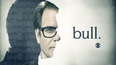 Billedresultat for tv show dr bull