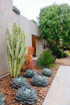 38 Pretty front yard landscaping ideas with modern style 20 Cheap Landscaping Ideas, Small Front Yard Landscaping, Succulent Landscaping, Landscaping With Rocks, Succulents Garden, Garden Landscaping, Landscaping Design, Desert Landscape Backyard, Front Yard Planters