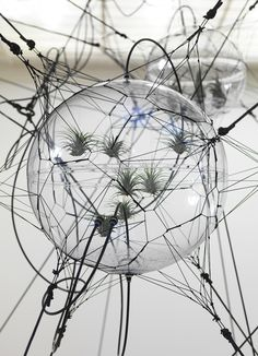 """Tomas saraceno """"Cloud cities"""" Berlin 2012. Each sculpture is about supplements from plants, water or reflectors set in its own habitat and spatial relationship to the other.    At the end of his work to escape the 'traditional notions of place, time, gravity and traditional ideas about architecture."""
