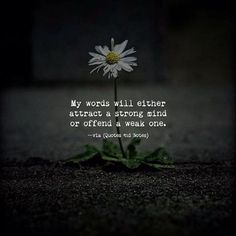 My words will either attract a strong mind or offend a weak one. Life Quotes Love, Cute Quotes, Great Quotes, Quotes To Live By, Fabulous Quotes, Smile Quotes, Attitude Quotes, Music Quotes, Quotable Quotes