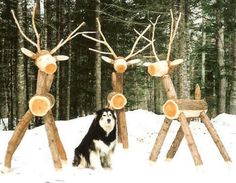 Norse Woods Deer and other outdoor crafts... I want these! Hubs could make them for me!!!!!!!!