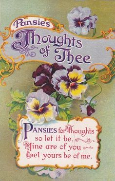 Antique Pansies Thoughts of Thee Romance Flowers 1900s Gardener Postcard | eBay