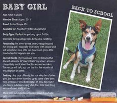 "Baby Girl is back for another year of ""school"" with us, but we really want her to graduate and move on to a home soon.  #Adoptable #Terrier #Beagle #Georgia"
