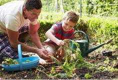 Atrévete a crear con tus hijos un huerto casero, además de enseñarles a cuidar de las plantas, puede representar un ahorro para el hogar.
