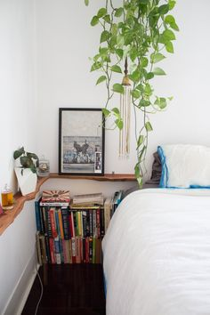love the live edge shelving Alex and Max's Earthy and Eclectic Venice Bungalow