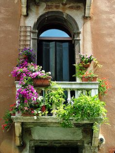 Beautiful arrangement of flower-filled pots / This would look great on any balcony or deck.