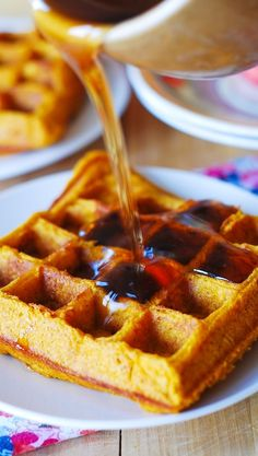 The waffles are made with buttermilk, brown sugar, pumpkin puree and spices: ginger, cinnamon, nutmeg. Great recipe to make for Thanksgiving breakfast. Fall and Winter are perfect time to Beignets, Pumpkin Pancakes Easy, Fall Breakfast, Breakfast Waffles, Breakfast Ideas, Pumpkin Breakfast, Tasty, Yummy Food, Waffle Recipes