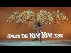 Movie title from the film 'Under the Yum Yum Tree' directed by David Swift, starring Jack Lemmon, Carol Lynley and Dean Jones Jack Lemmon Movies, Carol Lynley, Dean Jones, Title Card, Movie Titles, A Star Is Born, Feature Film, Comedians, Yum Yum