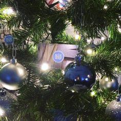 Blue Serif business cards with a festive twist! Serif, Business Cards, Festive, Christmas Bulbs, Marketing, Holiday Decor, Blue, Home Decor, Lipsense Business Cards