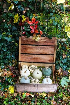 A seasonal display that works indoors and out. #DIY