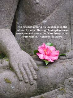 To reteach a thing its loveliness is the nature of metta. Through loving-kindness, everyone and everything can flower again from within ~ Sharon Salzberg Art Quotes, Inspirational Quotes, Motivational Quotes, Sharon Salzberg, Inside Job, Spiritual Inspiration, Encouragement Quotes, Thought Provoking, Buddhism