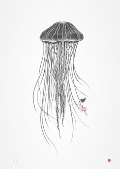 Do you ever wonder how jellyfish keep their tentacles from getting tangled up? #jellyfish #pencilart #sealife (photo credit Alba Teixidor)