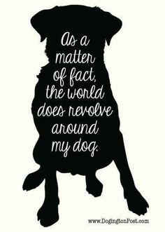 Download Dog Lover SVG FREE Download (SVG& PNG) By | Cricut | Svg ...