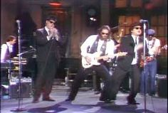 Image result for blues brothers cast