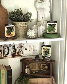 Ventured out on this gloomy day to an antique shop after an appointment this morning. Picked up that cute little bread box and got to meet… Summer Shades, Gloomy Day, Antique Show, Flower Frog, Seed Packets, Vintage Flowers, Liquor Cabinet, Seeds, Display