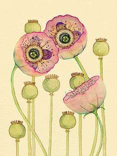 colleenparker:   Poppies & Pods