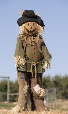 garden scarecrow More