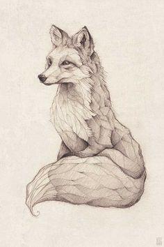 pencil drawing illustration art retro vintage old fox red fox vulpes a Art And Illustration, Fuchs Illustration, Illustration Fashion, Illustrations Posters, Cute Animal Illustration, Design Illustrations, Red Fox Tattoos, Animals Tattoo, Fuchs Tattoo