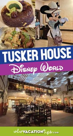 Tucked off to the side in Africa at Disney's Animal Kingdom you will find a restaurant called Tusker House. This character dining experience offers you an all you care to enjoy a family-style meal. If you have eaten at the Tusker House in the past this may sound a little different as it used to be a buffet. Best Disney World Restaurants, Disney World Food, Disney World Vacation, Disney World Resorts, Disney Vacations, Disney Travel, Disney On A Budget, Disney Tips, Disney Parks