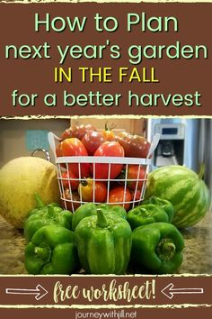 How to Plan Next Year's Garden in the Fall Whether you plan to garden in raised beds or in the ground, you can get a head start on planning next year's backyard garden in the fall. From garden layout and design to choosing which crops you want to grow and Backyard Garden Landscape, Garden Beds, Garden Fun, Fruit Garden, Garden Spaces, Garden Design Plans, Patio Design, Organic Gardening Tips, Vegetable Gardening