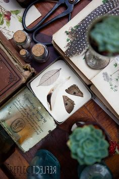 The Naturalist Melbourne