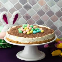 Your family and friends deserve to enjoy our delicious CADBURY MINI EGGS Cheesecake this Easter. No Egg Desserts, Desserts Ostern, Dessert Recipes, Easter Desserts, Health Desserts, Easter Cheesecake, Cheesecake Recipes, Butter Chocolate Chip Cookies, Chocolate Peanut Butter