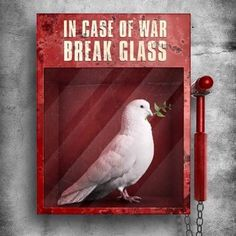 In Case of War, Break Glass