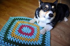 Crochet my left-over yarns into a small rug using two strands together and small hook to make tight stitches.  Use granny square or granny rectangle, then donate to local animal shelters or local vets.
