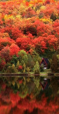 Quebec is beautiful, no matter what the season. It's like going to Europe but without the long plane ride! Le Chateau in Quebec City, Quebec. Autumn Lake, Autumn Nature, Autumn Scenery, Autumn Forest, Autumn House, Autumn Girl, Warm Autumn, Wild Nature, Nature Nature