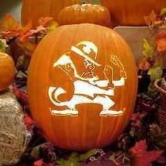 ND Pumpkin. Like the Irish? HereComestheIrish  Please be sure to upload and share any personal pictures of your Notre Dame experience with your fellow Irish fans!