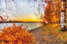 Najbardziej popularne znaczniki tego obrazu obejmują: autumn i fall