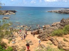 Shark's Cove: my favorite place to dive or snorkel in Oahu, Hawaii. It has incredible rock formations and beautiful wild life (sea turtles, parrot fish, manta rays, squid, did I mention sea turtles?).