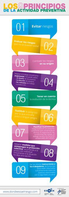 9 PRINCIPIOS ACTIVIDAD PREVENTIVA. PRL. RIESGOS LABORALES