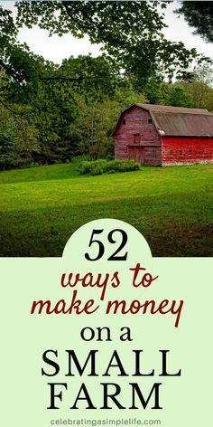Ways to Make Money Homesteading ways to make money on a small farm! Here are 52 creative and profitable ways to make money homesteading!ways to make money on a small farm! Here are 52 creative and profitable ways to make money homesteading! Homestead Farm, Homestead Survival, Survival Skills, Homestead Layout, Survival Tips, Homestead Living, Off Grid Homestead, Starting A Farm, Seed Starting