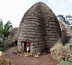 Africa | the Dorze people living in highlands west of the Abyssinian Rift Valley have a unique style of building their homes. The 20 foot high bamboo frame is covered with the sheaths of bamboo stems or straw and resembles a giant beehive.  Gamo Gofa Province.  Ethiopia |  © Nigel Pavitt.
