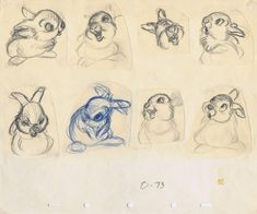 Design sketches of thumper, a character from the animated film bambi by disney. Art Disney, Disney Concept Art, Disney Style, Animation Sketches, Animation Film, Disney Sketches, Disney Drawings, Studio Ghibli, Illustrator