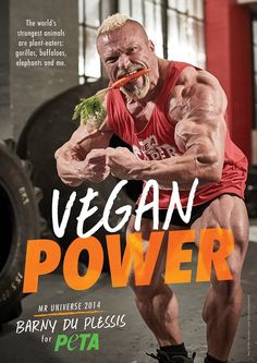 Universe Vegan Power: Since becoming a vegan, my training has been amazing. I wake up feeling good, I've got more energy, my recovery's really good and I've got no aches and pains. Best of all, I'm not contributing to the suffering o Fitness Transformation, Bodybuilder, Vegan Energy Bars, No Meat Athlete, Famous Vegans, Strongest Animal, Getting More Energy, Vegan Facts, How To Become Vegan