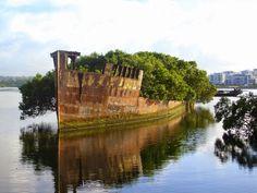 """Floresta Flutuante"" - Sidney, Austrália"