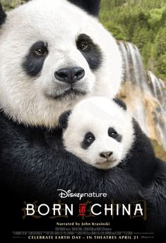 Disneynature Born in