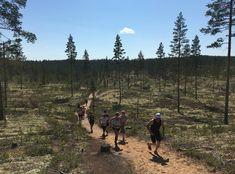 Viikonloppuna tutustuttiin aurinkoisessa säässä Rokuan polkuihin #mennäänmetsään polkujuoksukiertueella ☀️ Tervetuloa juoksemaan myös…