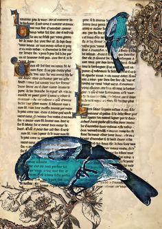 Blue bird in book