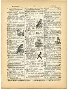 Printable Vintage Ephemera Dictionary Page Picture
