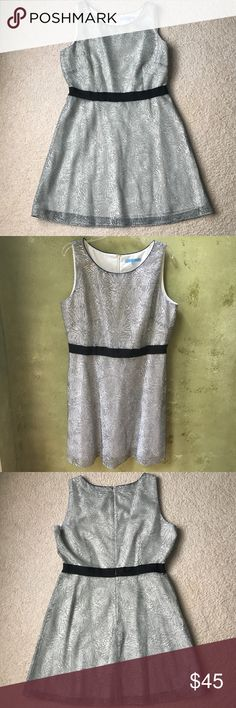 Antonio Melani Black and White Dress Antonio Melani Black and White Dress. Beautiful lined dress with a firework pattern. Gently used but still in great condition. ANTONIO MELANI Dresses