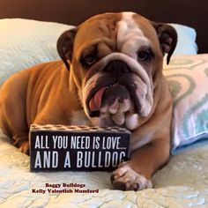 #Bulldogs are all you need!