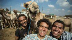 #camelfie - daylol.com